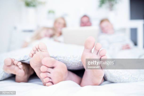 feet of family lying in bed using laptop - male feet soles stock photos and pictures