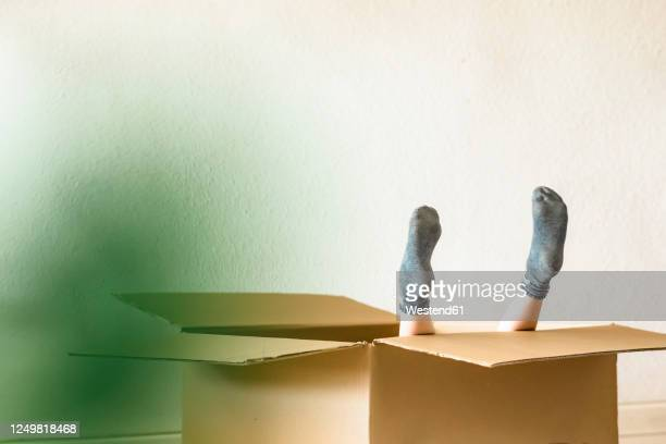 feet of girl inside a cardboard box - protruding stock pictures, royalty-free photos & images