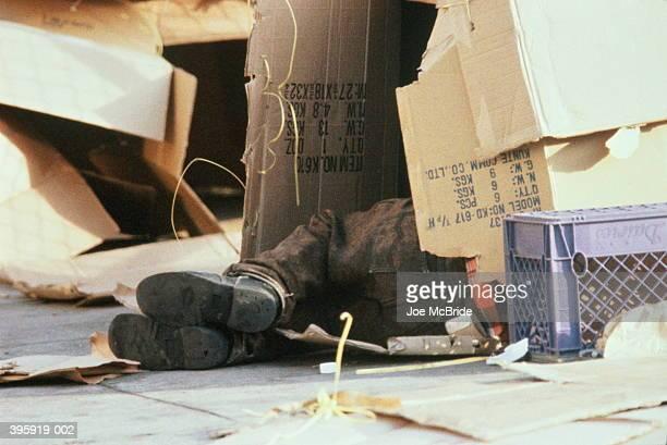 feet of homeless person sleeping in cardboard box - sin techo fotografías e imágenes de stock