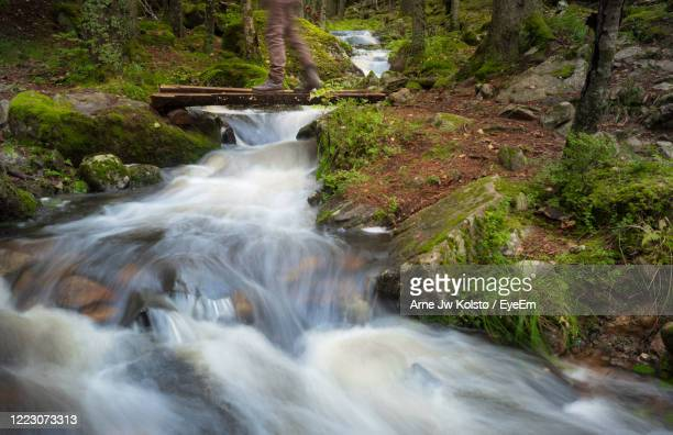 feet on a footbridge over a stream flowing through a forest - arne jw kolstø stock pictures, royalty-free photos & images