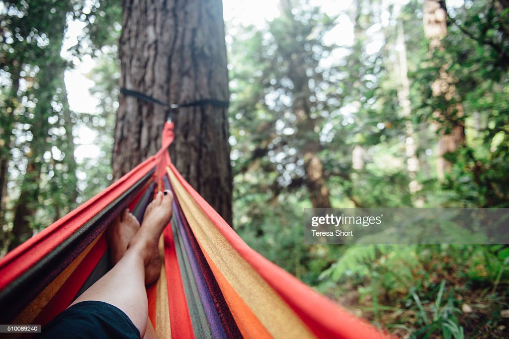 feet resting on colorful hammock in the woods   stock photo feet resting on colorful hammock in the woods stock photo   getty      rh   gettyimages