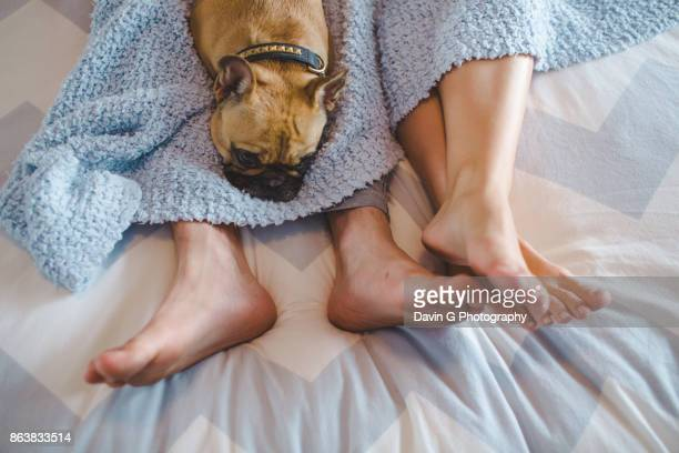 Feet with Dog