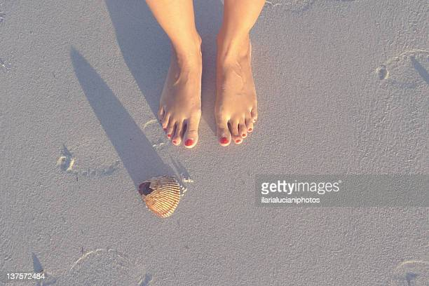 feet with shell - jacksonville beach stock pictures, royalty-free photos & images