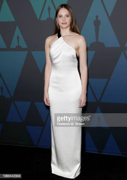 Felicity Jones attends the Academy of Motion Picture Arts and Sciences' 10th Annual Governors Awards at The Ray Dolby Ballroom at Hollywood Highland...