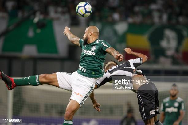 Felipe Melo and Matheus Fernandes during the game between Palmeiras and Botafogo valid game for the 2018 Brazilian championship in Allianz Arena west...