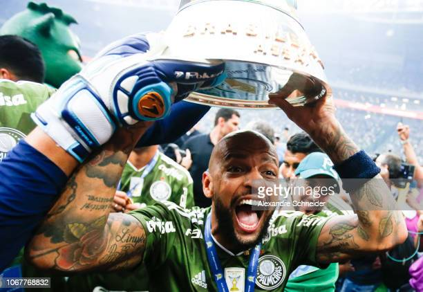 Felipe Melo of Palmeiras celebrates after winning the Brasileirao 2018 after the match against Vitora at Allianz Parque Stadium on December 02 2018...