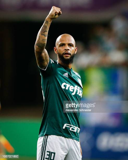 Felipe Melo of Palmeiras celebrates his team's victory after winning the match against Santos for the Brasileirao Series A 2018 at Allianz Parque...