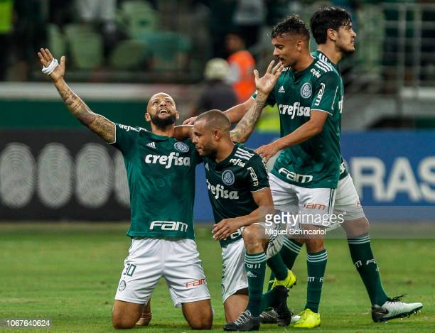 Felipe Melo of Palmeiras celebrates with teammates after scoring the third goal of his team during a match between Palmeiras and Fluminense for the...