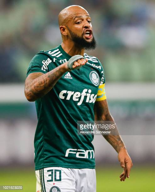 Felipe Melo of Palmeiras reacts during the match against Botafogo for the Brasileirao Series A 2018 at Allianz Parque Stadium on August 22 2018 in...