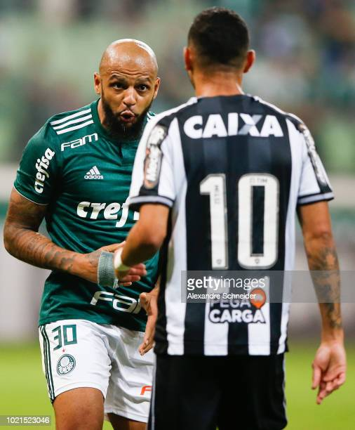 Felipe Melo of Palmeiras talks to Luiz Fernando of Botafogo during the match for the Brasileirao Series A 2018 at Allianz Parque Stadium on August 22...