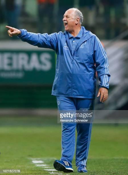 Felipe Scolari head coach of Palmeiras gestures during the match against Botafogo for the Brasileirao Series A 2018 at Allianz Parque Stadium on...