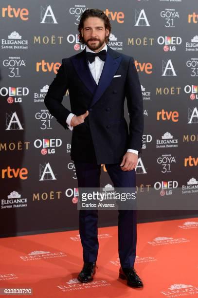 Felix Gomez attends Goya Cinema Awards 2017 at Madrid Marriott Auditorium on February 4 2017 in Madrid Spain