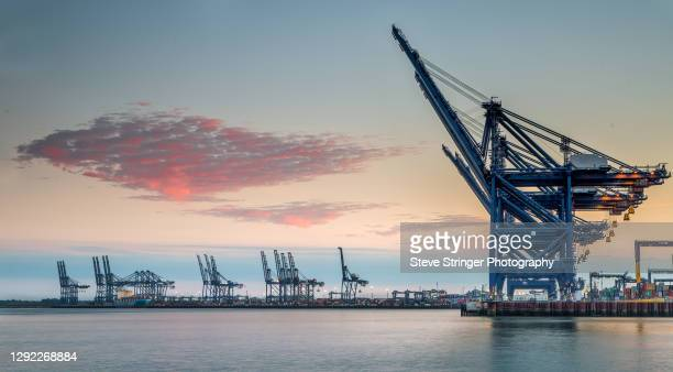 felixstowe container port - harbour stock pictures, royalty-free photos & images