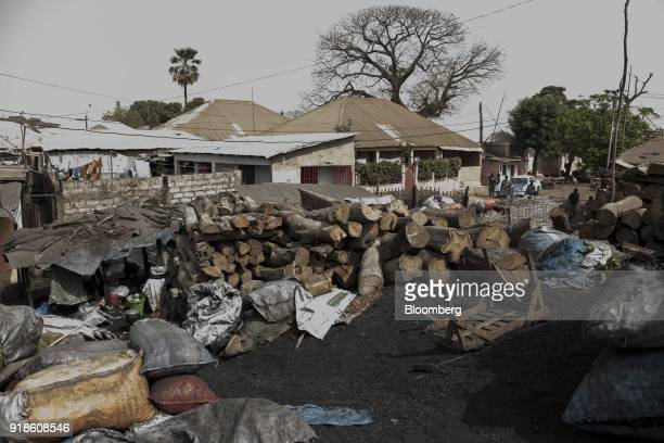 Felled logs of wood sit in storage ready to make charcoal near Bandim market in Bissau GuineaBissau on Tuesday Feb 13 2018 The International Monetary...
