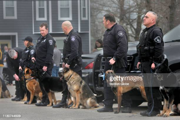 Fellow police officers with their dogs lined the parking lot of the animal hospital After Saugus Police Officer Timothy Fawcett's K9 Bruin was...