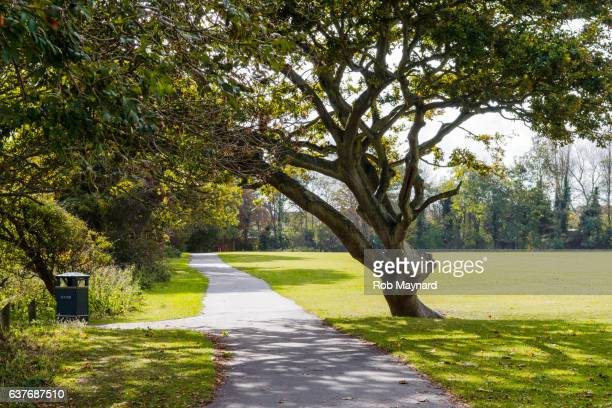 felpham park - parkland stock pictures, royalty-free photos & images