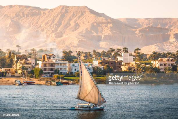 felucca boat is sailing along the nile river in aswan the southern city of egypt - egypt stock pictures, royalty-free photos & images