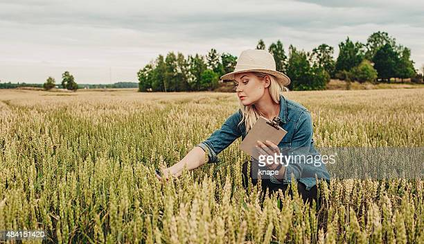 Female agronomist researching the agriculture field
