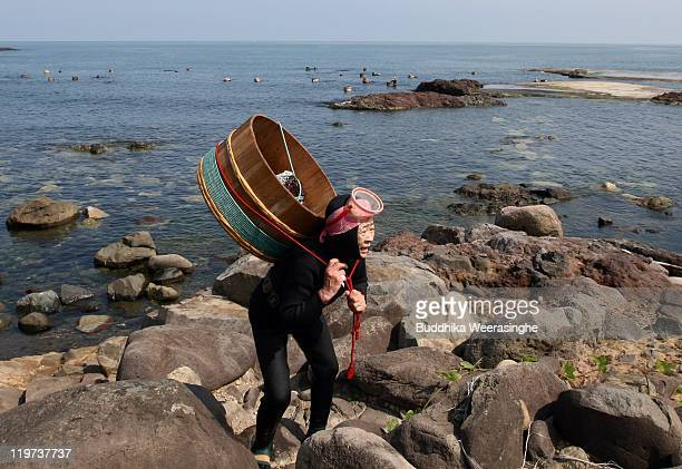 Female Ama diver carries her catch of sea urchins at Fukura Beach on July 24, 2011 in Fukui, Japan. In Fukui prefecture, sea urchin fishing is...