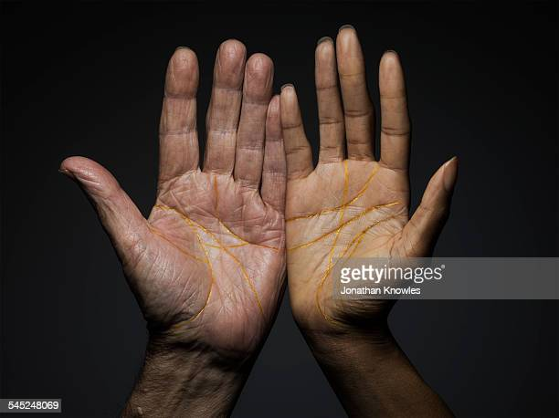 Female and male hands of different colour and age