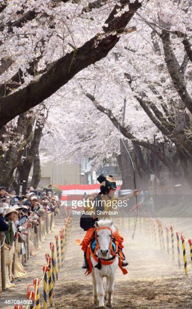 A female archer on a horseback takes aim during the 'Sakura Yabusame' or Cherry Blossom Horseback Archery on April 26 2014 in Towada Aomori Japan