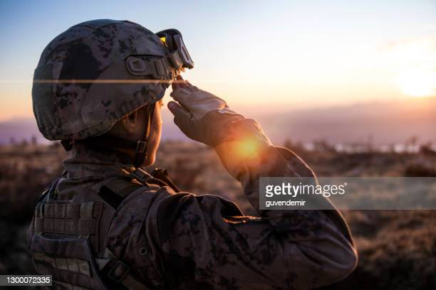 female army solider saluting against sunset sky - military stock pictures, royalty-free photos & images