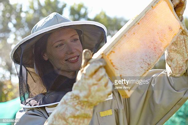 female beekeepers holding up honeycomb tray on city allotment - 養蜂 ストックフォトと画像
