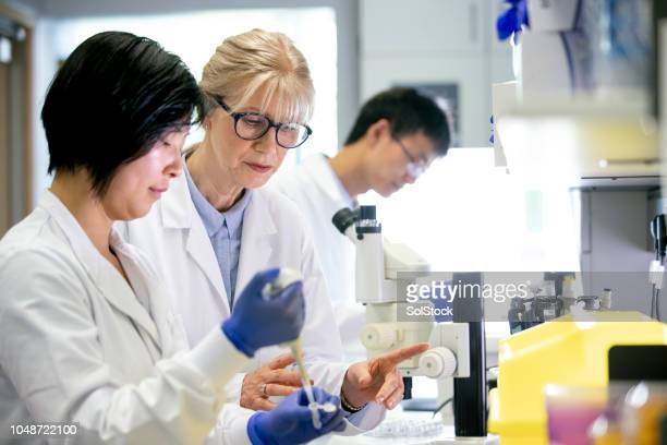 female bio-chemists running tests - film and television screening stock pictures, royalty-free photos & images