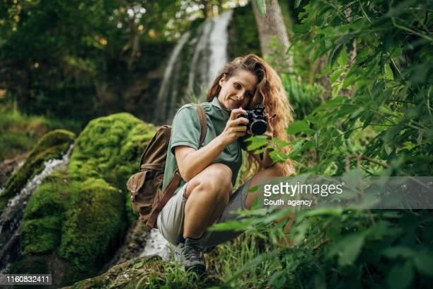biologa donna che esamina le piante - biologo foto e immagini stock