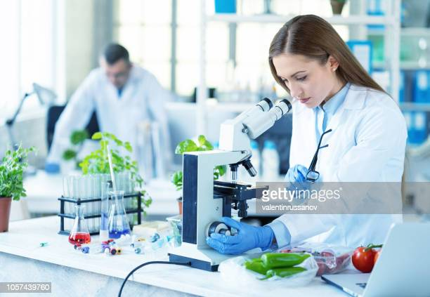 female biologist holding a plant in laboratory - agronomist stock pictures, royalty-free photos & images