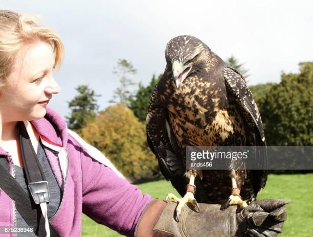 female bird handler and eagle