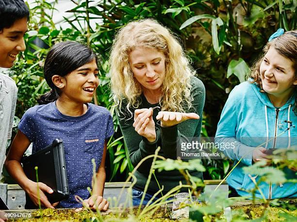 female botanist showing worms to young students - patrocinador imagens e fotografias de stock