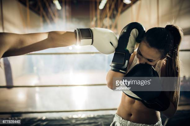 female boxer blocking opponents kick during the match. - martial arts stock photos and pictures