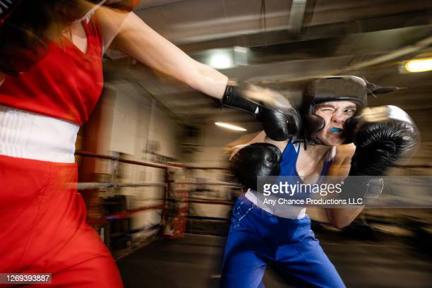 female boxer getting hit on the chin during a sparring session. - boxing stock pictures, royalty-free photos & images