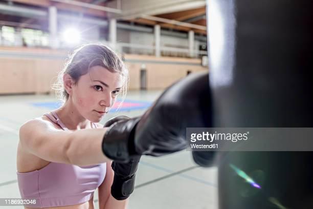 female boxer practising at punchbag in sports hall - kampfsport stock-fotos und bilder