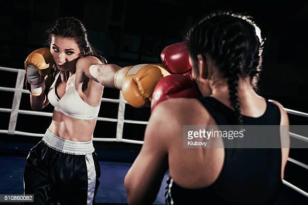 Boxer femelle combats dans le bague de boxe