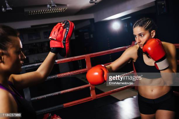 female boxers having a fight in the ring during sports training - women's boxing stock pictures, royalty-free photos & images