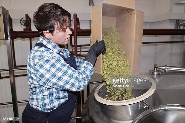 Female brewery owner putting hops into tank
