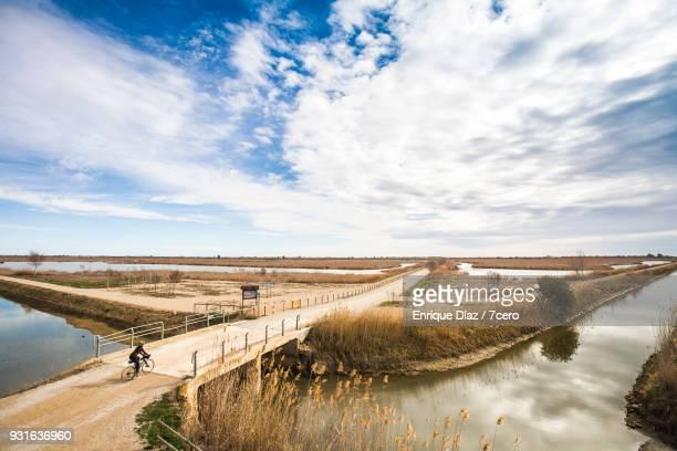 female cyclist crossing bridge in the delta del ebro - delta del ebro fotografías e imágenes de stock