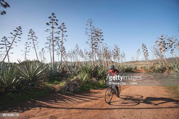 Female Cyclist in Agave Forest in Cabo de Gata