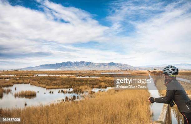 female cyclist looking at landscape in the delta del ebro - delta del ebro fotografías e imágenes de stock