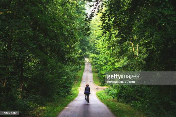 a female cyclist riding through the eawy forest, france - vanishing point stock pictures, royalty-free photos & images