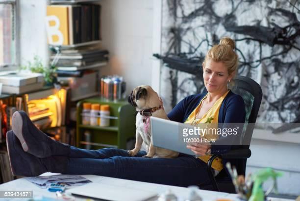female designer in her studio reading from tablet computer - 愛玩犬 ストックフォトと画像