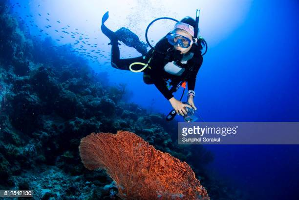 Female diver looks at orange sea fan on the coral reef