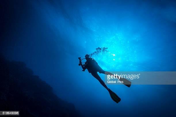 weibliche taucher-palau, mikronesien - sporttauchen stock-fotos und bilder