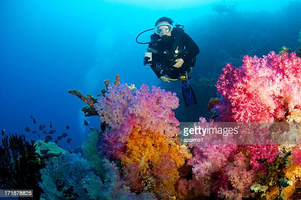 Female diver with soft coral