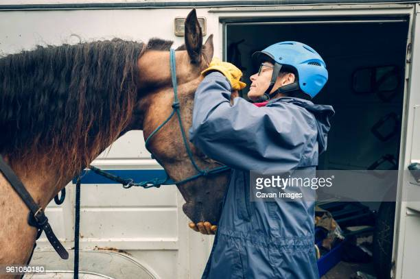 female doctor examining horse while standing by ambulance - livestock stock pictures, royalty-free photos & images
