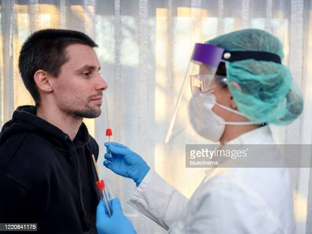 female doctor taking a nose swab test from a young man for covid-19 testing - nose mask stock pictures, royalty-free photos & images
