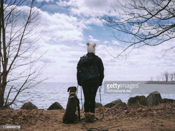 instrutor fêmea do cão com o cão novo do pugilista - cão adestrado - fotografias e filmes do acervo
