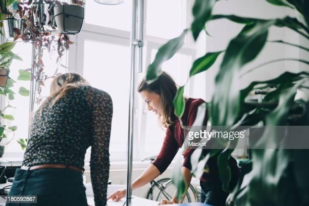 female entrepreneurs discussing at table in creative office - agence de design photos et images de collection